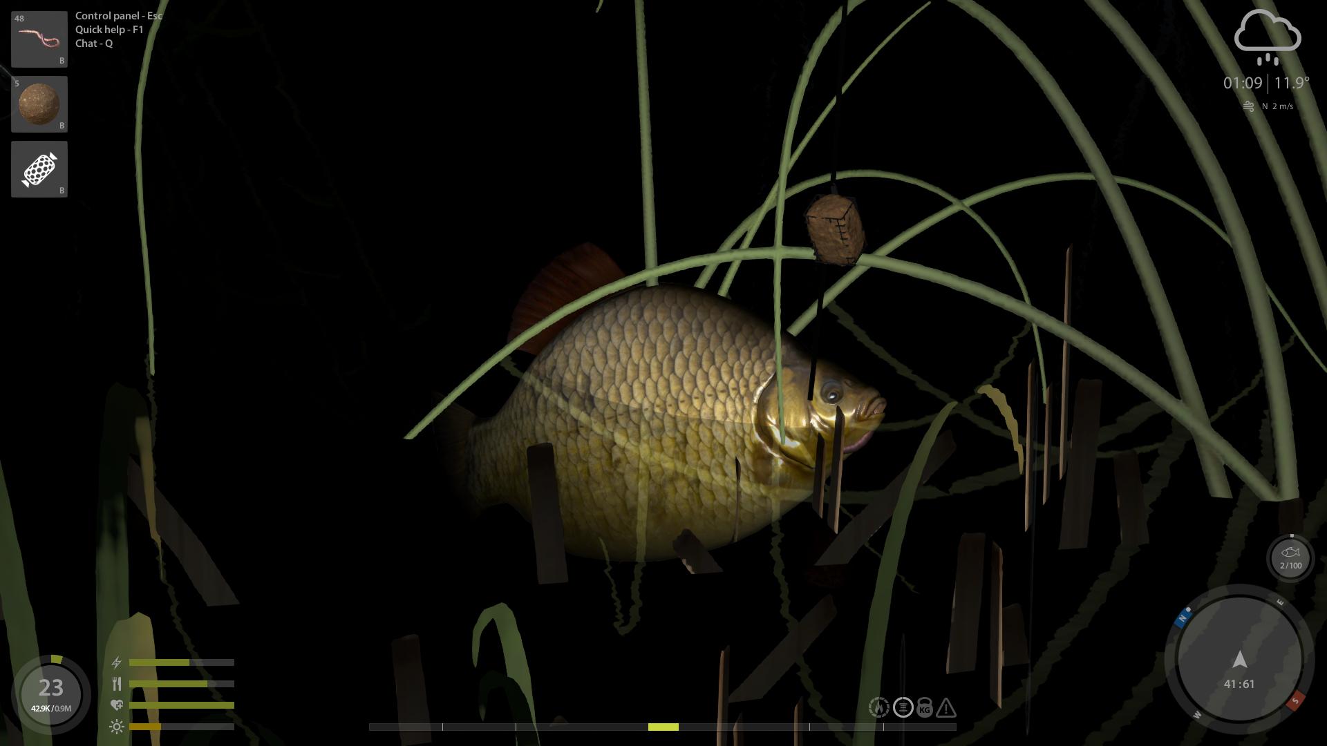 Russian Fishing 4 *Gratis* CrucianT.png.551047f48e61e4db3641e7052e9b6cc5