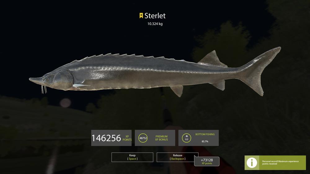 Sterlet (10,324 Kg).png