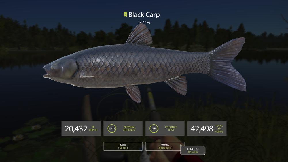 Pesca Screenshot 2018.06.21 - 00.32.46.18.png
