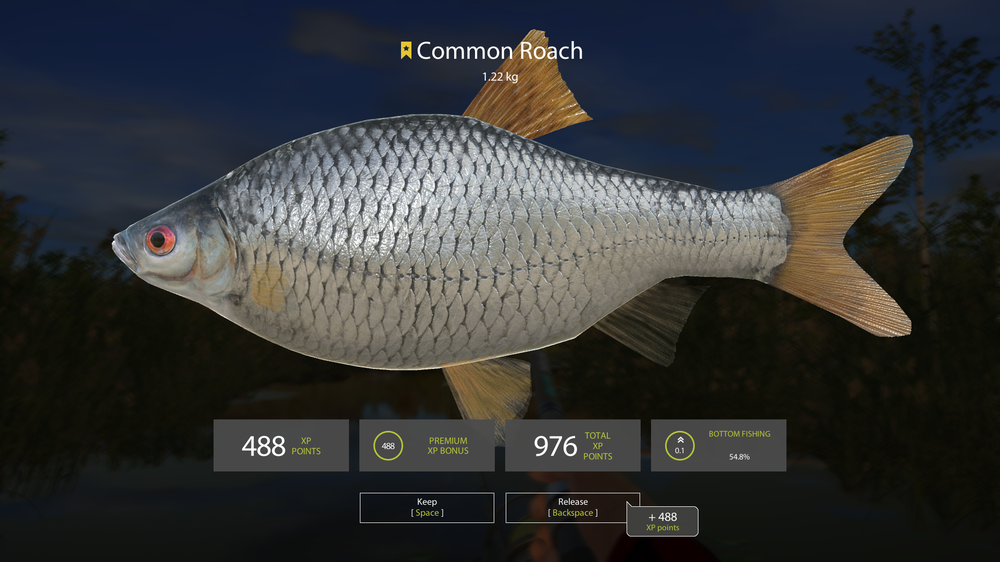 Pesca Screenshot 2018.06.16 - 11.55.09.25.png