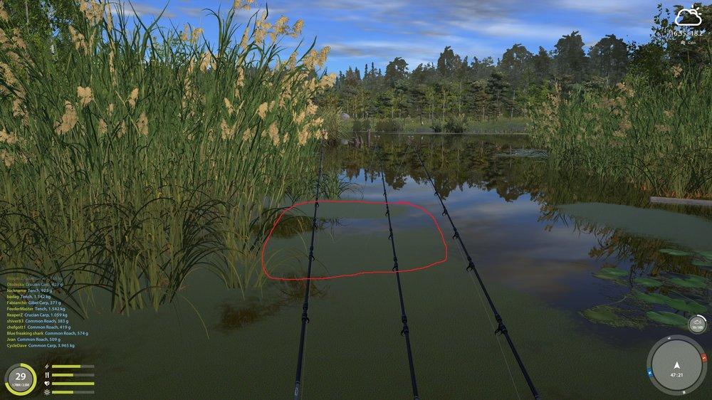 baitfish.thumb.jpg.52e5070a061b0d16f778a35daa96245a.jpg