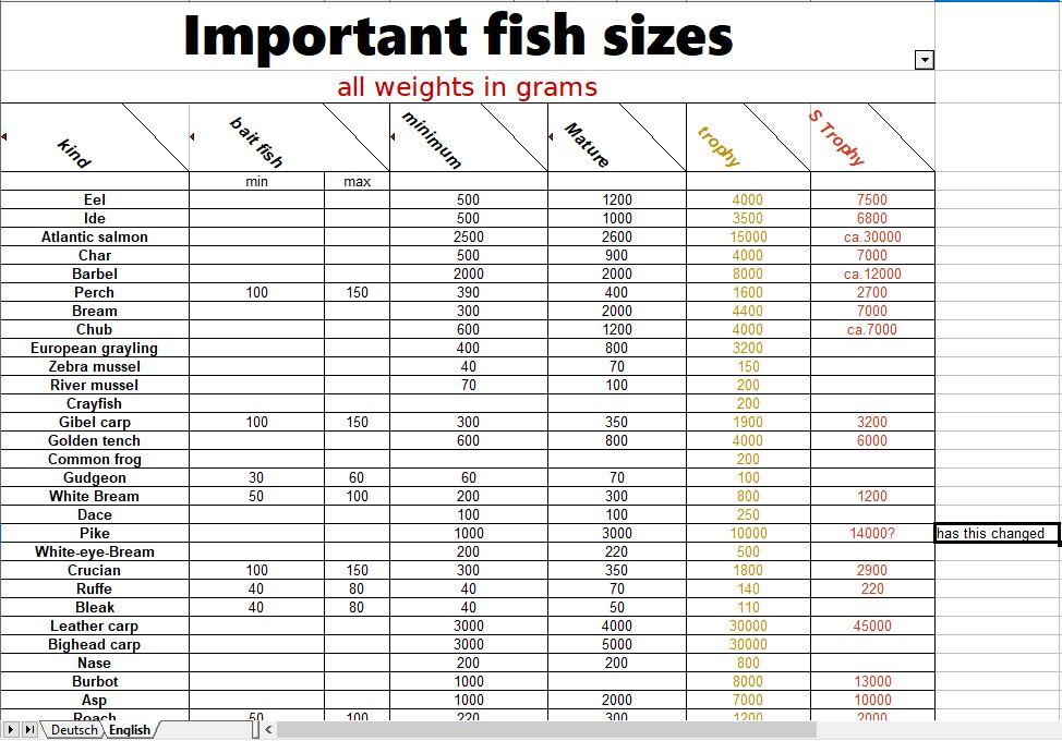 Fish Sizes.JPG