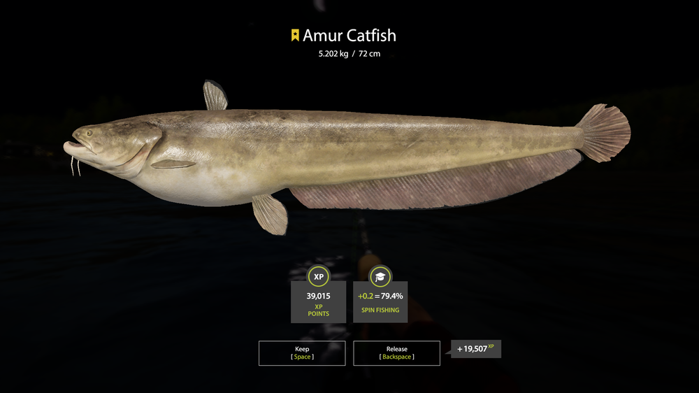 1084134776_RussianFishing4Screenshot2020_07.13-15_04_59_45.thumb.png.3eb125bdf66e1d3e370cc6d58183f1d6.png