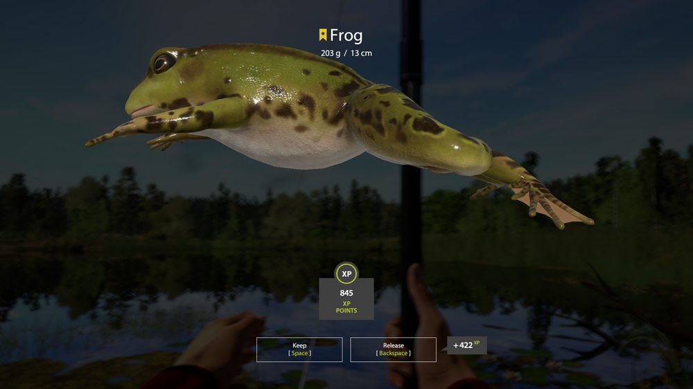 Frog record 25-09.png