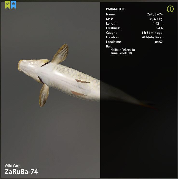 Fish.jpg.2f4f0b9aa4348ce8566aa62f635eb888.jpg