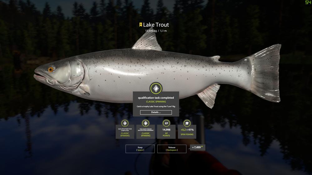 lake trout trophy.png